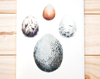 Eggs CARD (3-pack)