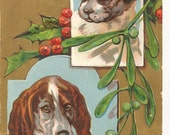 "Beautiful Vintage 1910's  ""A Merry Christmas To You"" Xmas Dogs Postcard"