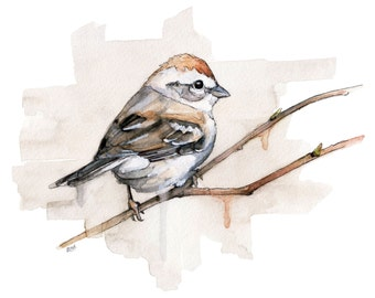 """Watercolor Sparrow Print - Painting titled, """"Sparrow"""", Songbird, Bird Prints, Watercolor Bird, Bird, Watercolor Painting, Sparrow Art"""