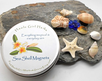 Sea Shell Magnets, Set of 7 in Gift Tin - Sea Shells, Starfish, Beach Glass, Magnets, Ocean, Beach Wedding, Office, Fridge