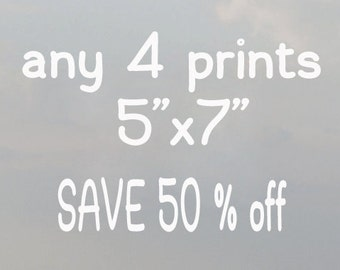 DISCOUNT set, discount photo set, any 4 photography prints 5x7 - save 50% off custom photographs of your choice pictures prints on sale