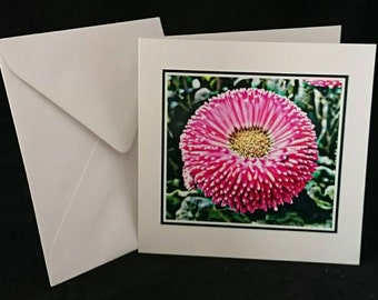 "Photography 5""x5"" Blank Greetings Card,  Flowers (C162016)"