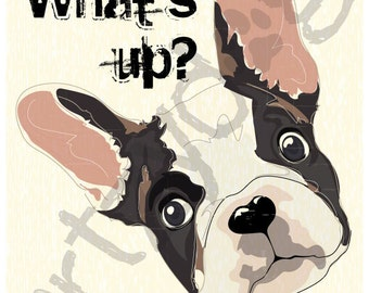 """French Bulldog - What's Up? -  8"""" x 10"""" Photo Print with 1/8"""" border for framing"""