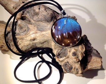 Real Blue Morpho Butterfly Wing Reversible Adjustable Pendant. Nature's Reliquaries Collection