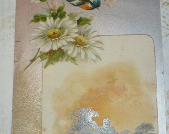 on sale Pretty Bird and Daisies on Scenic Postcard