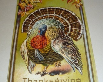 Beautiful Turkey and Fall Leaves Antique Thanksgiving Postcard