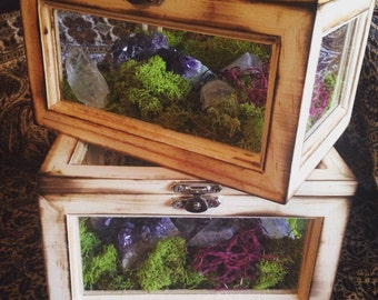 Terrarium Box Crystal Garden Crystal Air Planter Fairy Garden Terrarium Kit Raw Amethyst Girlfriend Gift for Her Healing Crystals Bohemian