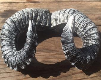 "Ram  ""Ghost Horns"" Wearable, beautifully rugged Ram Horns"