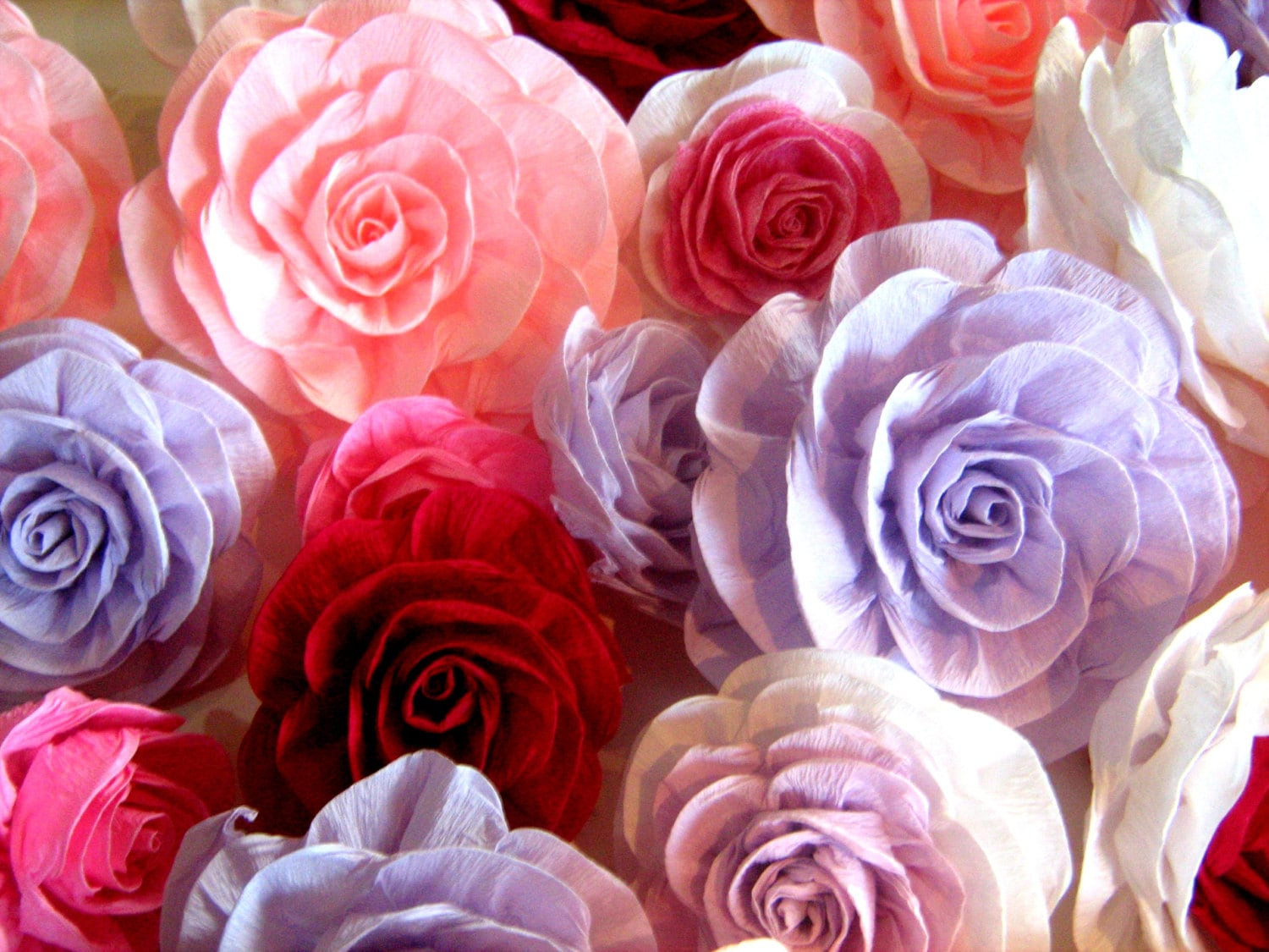 10 great large giant paper flowers crepe paper photo backdrop for Crepe paper wall flowers