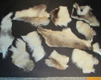 10 pieces remains of reindeer skins