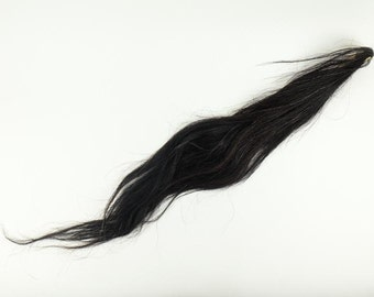 Dried Horse Tail : Black-Red