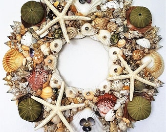 """16"""" Sea Shell Wreath with Green Sea Urchins & White Star Fish from Ellie's Collection's Etc."""