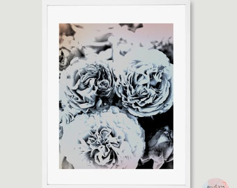 Roses / fine art photography / download file / black, white, pink /.
