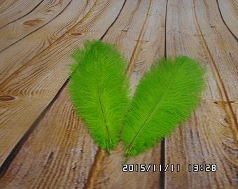 100 pcs green Ostrich Feather Plume for Wedding centerpieces,  Samba accessories