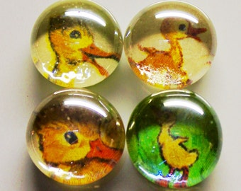 4 Duck Illustrations Up cycled Magnets