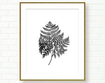 Botanical Prints, PRINTABLE, INSTANT DOWNLOAD, Fern Art, Poster, Black White Wall Art, Plants, Woodland, Natural History, Wall Decor