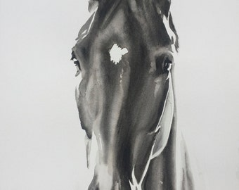 """HORSE Watercolour  GICLEE PRINT 14"""" x 20"""" plus various sizes available"""