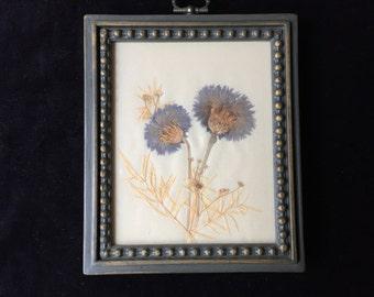 Vintage Lee Ward real flower picture
