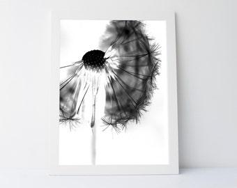 Dandelion Print, Dandelion Art, Dandelion Photo, Black White Wall Art, Dandelion, Black and White, Printable art, Wall Art Printable