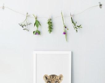 Baby tiger print - Animal Nursery decor - Photography nursery wall art - Animal nursery prints - Printable nursery art - Cute tiger print