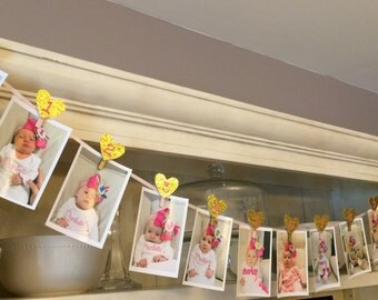 Pink and Gold First Birthday Photo Clips, First Birthday Photo Banner