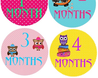 Sticker Baby Monthly Stickers Month Stickers Bodysuit Milestone Stickers Monthly Baby Stickers Photo Baby Sticker Month by Month Shower Gift