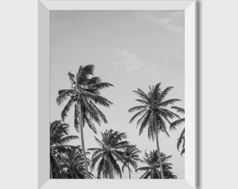 Palm Tree Wall Prints, Black White Photography, Palm Tree Poster Print, Black White Palm, Palm Tree Wall Art, Tropical Print, Home Art
