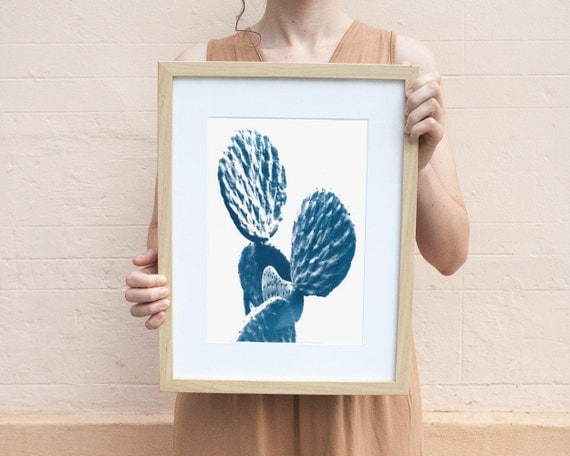 Cactus Succulent, Cyanotype Print on Watercolor Paper, A4 size