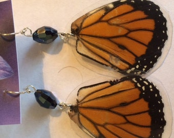 Actual Butterfly/Cicada Wing Jewelry