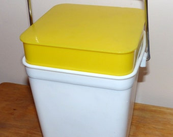 Small Cooler Plastic picnic Vintage - Cooler pay site - lunch box