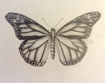 "Drawing pencil ""The Butterfly"""