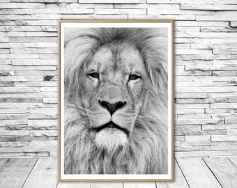 Lion Print, Lion Wall Art, Safari African Animal, Lion Photo, Black And White Animal Print, Modern Wall Art, Nursery Decor, Printable Art