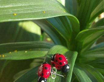 Polymer Ladybug Earrings