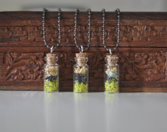 Moss Jar Necklace Style 1