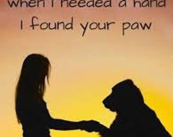 Hundreds Of Best DOG Picture Quotes For Your Inspiration