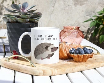 Hedgehog Lover Coffee Mug - Cute Hegdehogs Mug - Hedgehog Owner Gift - Hedgehog Person Gifts - Funny Hedgehog Mug - Hedgehog Home Decor