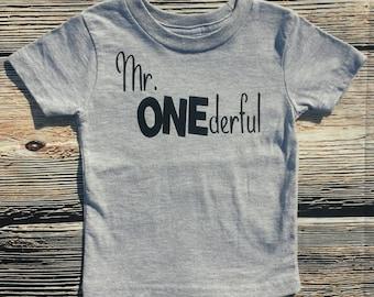 Mr. Onederful tshirt, first birthday boy shirt, birthday boy shirt,
