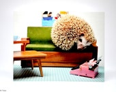 MCM Hedgehog Postcard, set of 2, Mid-Century Mirah postcards