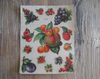 Meyercord Cheery Bright Fruit Decals # 1518 D