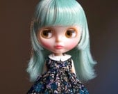 garden grove vintage dress for blythe