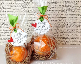Orange You Glad We're Friends...I am/We Are  TAG Classroom Treat, Valentine's Day Treat, Birthday Party Favor, Holiday Treat