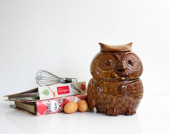 Vintage McCoy Woodsy Owl Cookie Jar / Mid Century McCoy Owl Canister in Coffee Brown
