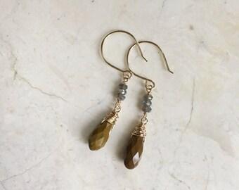 Long Labradorite Stone Earrings. Long Stone Dangles. Ocean Jasper. Earth Tones. Earthy Earrings. 14K Gold Filled Hooks. Wire Wrapped.