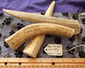3 Piece Large Variety Deer Antler Dog Chews for Moderate to Heavy  Chewers LESS than 35 lbs., s3plv-503