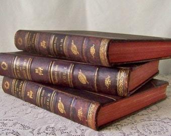 Antique Art Book Set Art And Artists of Our Time 1888 Clarence Cook RARE 3 Volume Set Steel Engravings Art Reference 19th Century Artists