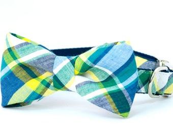 Crew LaLa™ Beaufort Blue & Green Madras Bow Tie Dog Collar