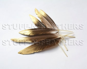 """Natural brown duck feathers with GOLD tip - """"gold dust"""" - painted feathers with ombre effect / 6-8 in (15-20 cm) long, 6 pcs /F172-6GD"""