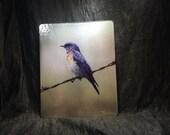 Large Glass Cutting Board - Bluebird 12in x 15in
