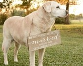 Save the Date Sign, My Humans are getting married, Pet save the date sign, Engagement Photo Prop, Save the Date Sign for Dog, Wooden Signs