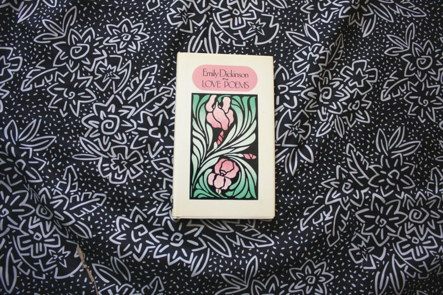 an overview of the emily dickinsons poems Literature network » emily dickinson » snake  poetry books poems, series 1 poems, series 2 poems, series 3 poetry a book a charm invests a face a narrow .